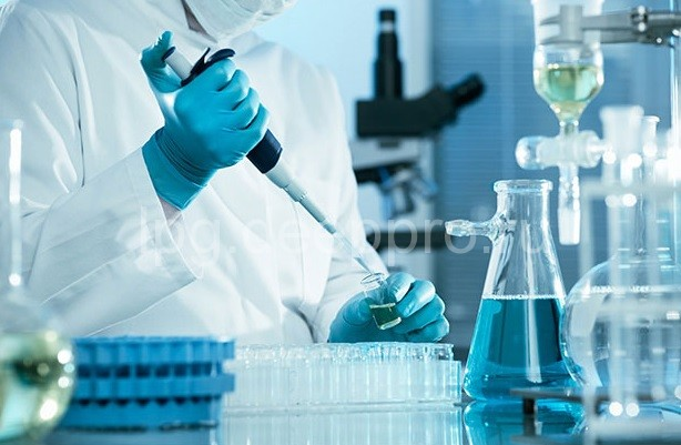 Получение плаценты человека